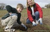 planting DSC_0425 2